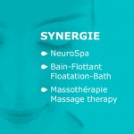 synergie 1